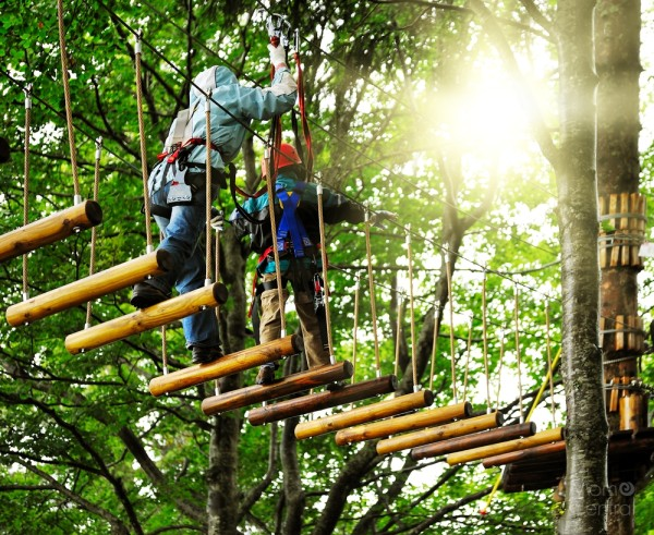 Go Ape! Embracing Adventure with your Kids