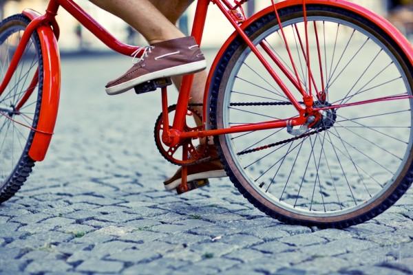 Racor Bike Lift – Convenient Space Saving Home Storage Device