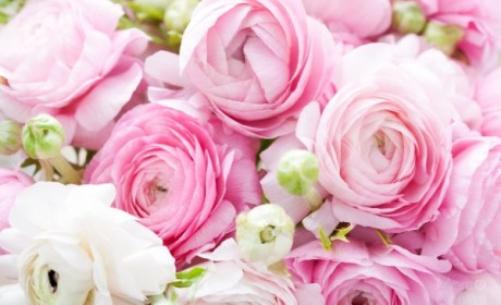 Finding that Perfect Flower Arrangement Online with BloomNation