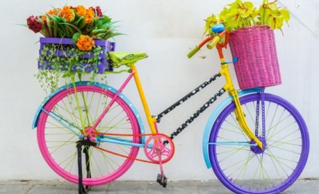 Make your day with flowers and music!
