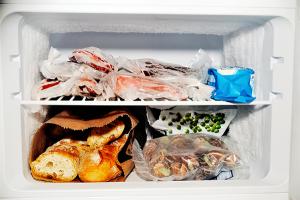 Freezer Foods3