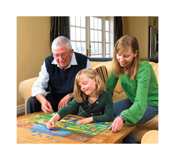 Great Family Activity – Cobble Hill Puzzles