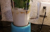 Proctor Silex Mini Blender: Perfect for On the Go Nutrition