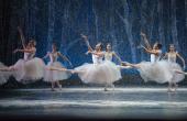 The Boston Ballet's