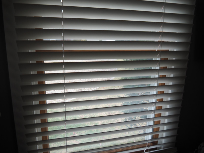 Serena Smart Wood Blinds – The Smartest Purchase for Window Covering Upgrades!
